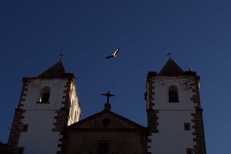 Visitas Guiadas y Free Tours a Cáceres con Guías Oficiales de Turismo